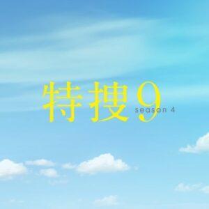 【無料動画】特捜9season4を無料で1話から最終回まで楽しむ方法!見逃し配信&無料視聴!