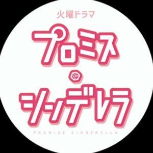 【無料動画】プロミス・シンデレラの1話から最終回までの見逃し配信と無料視聴方法!